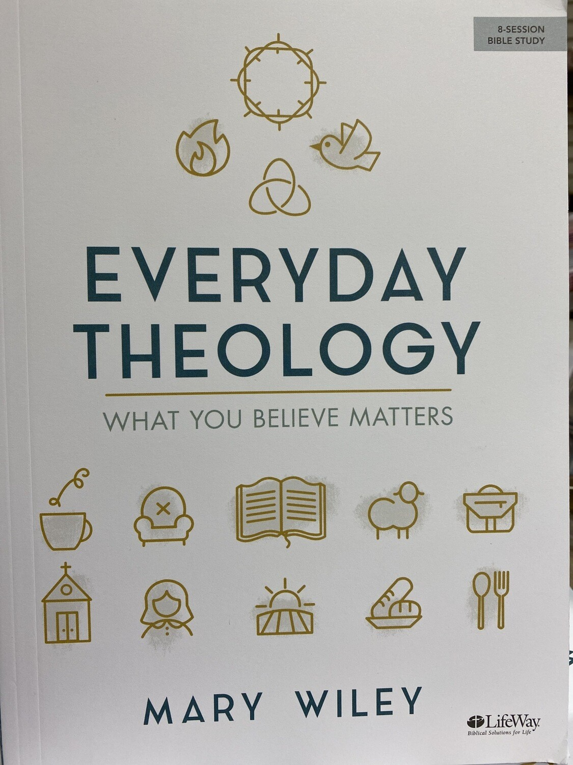 WILEY, Everyday Theology-What You Believe Matters