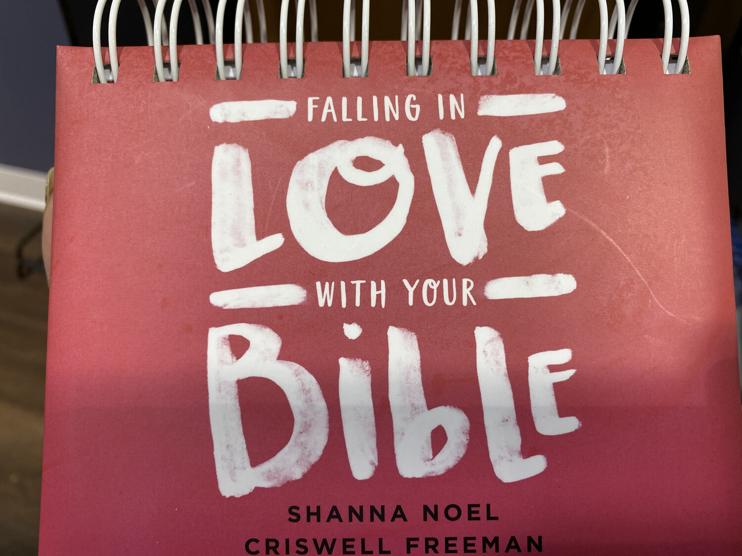 Daybrightener Falling In Love With Bible