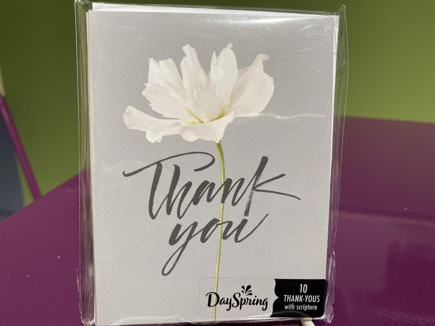 DAYSPRING, Thank You Gray