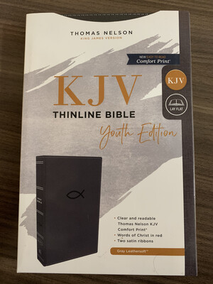 KJV, Youth Ed. Thinline Bible, Gray