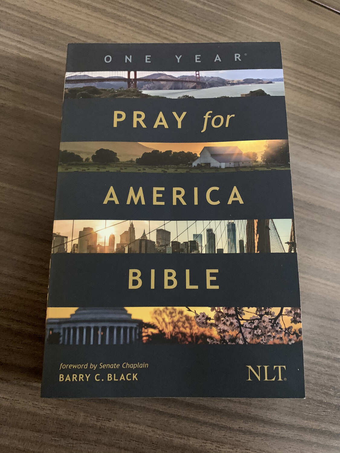 NLT, One Year Pray for America Bible