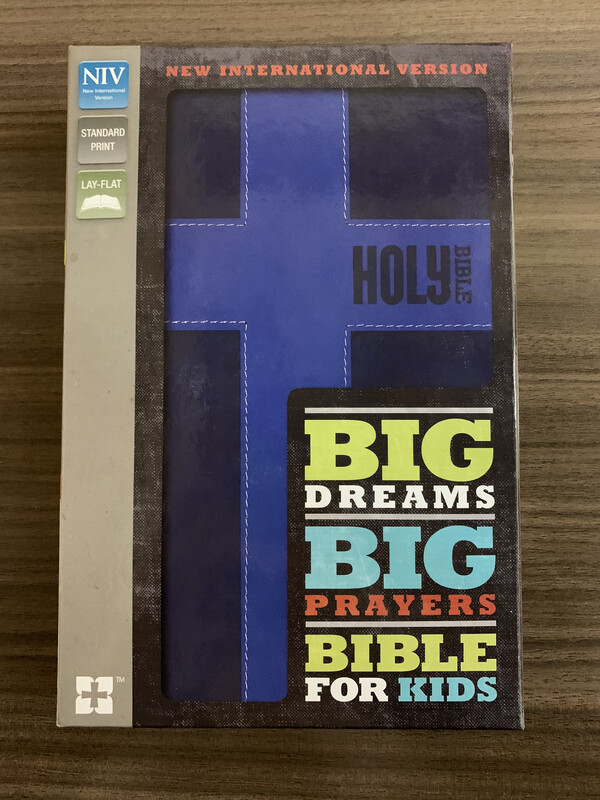 NIV BIG DREAMS Big Prayers Bible