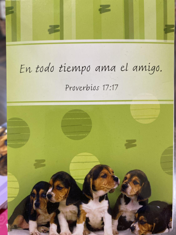 Sp Notebk Prov 17:17