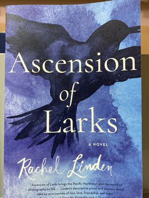 LINDEN, Ascension Of Larks