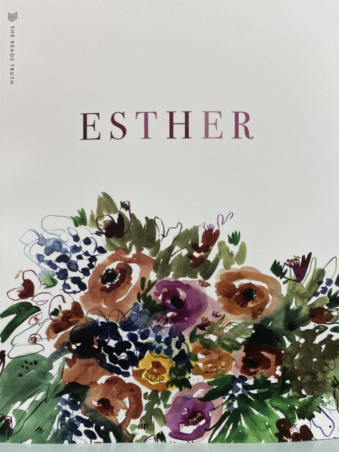 Esther Bible Study, She Reads Truth