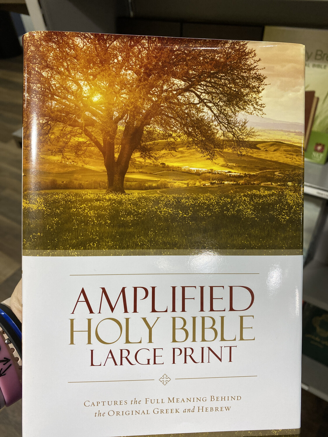 Amplified Bible Large Print Hardcoved