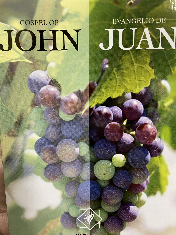 Gospel Of John/Evangelio De Juan