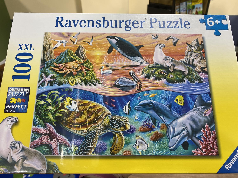 Beautiful Ocean 100 Piece Puzzle