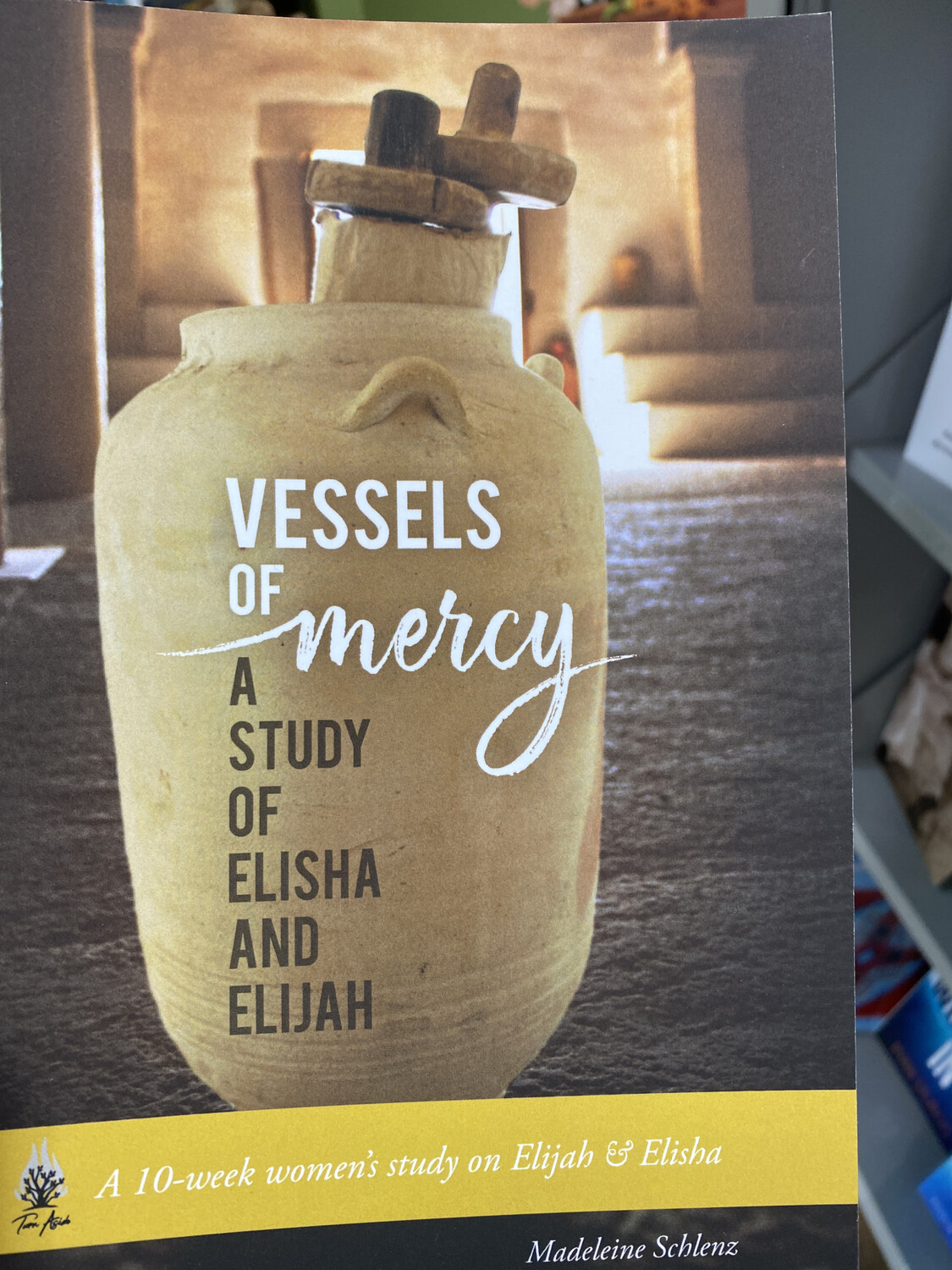 Consign, SCHLENZ - Vessels Of Mercy, Study Of Elisha and Elisha