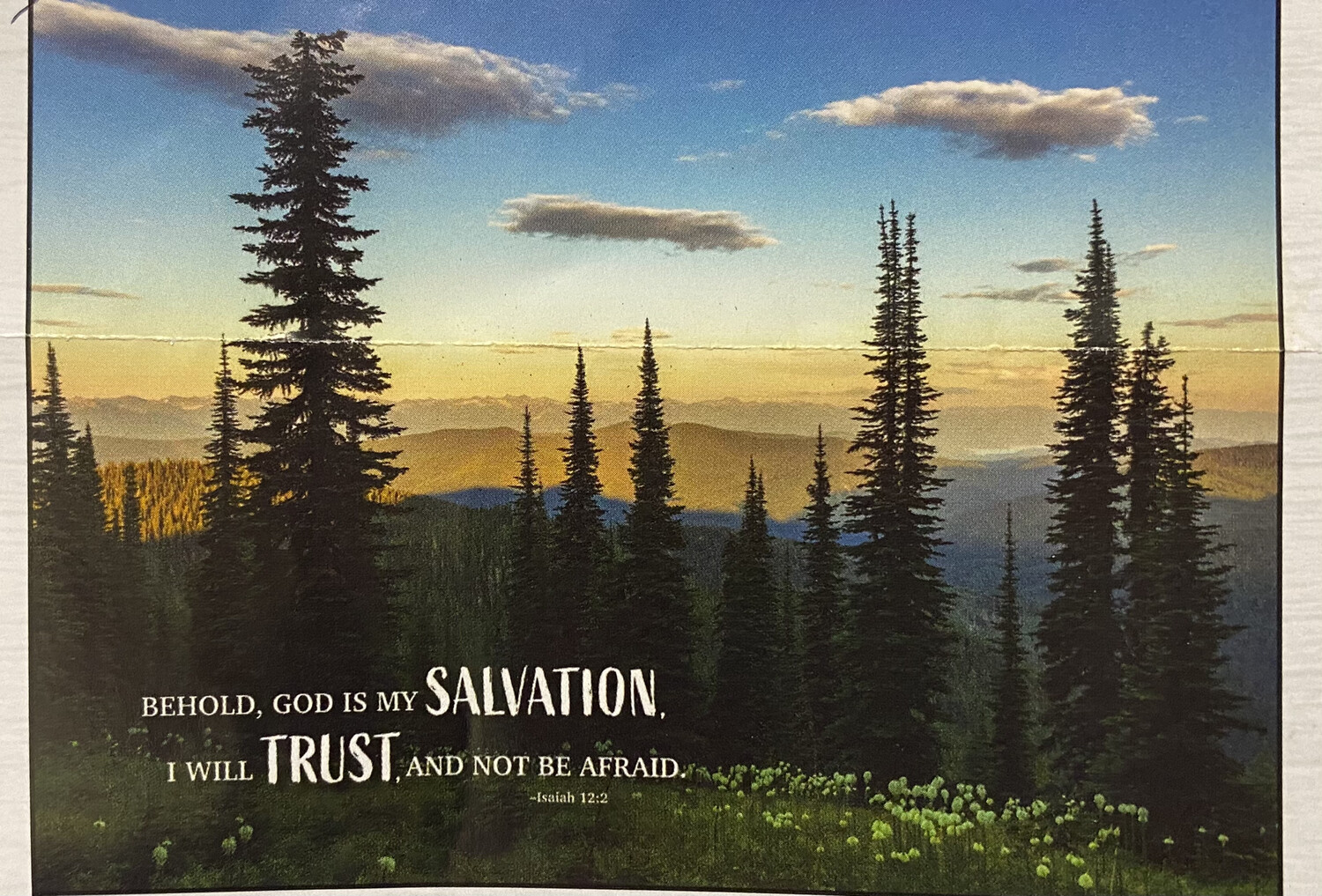 Puzzle, 1000 Piece Salvation And Trust