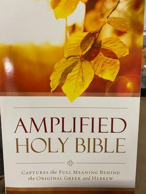 AMPLIED BIBLE, Paperback