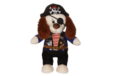 """10"""" Pirate Dog Activity Pack"""
