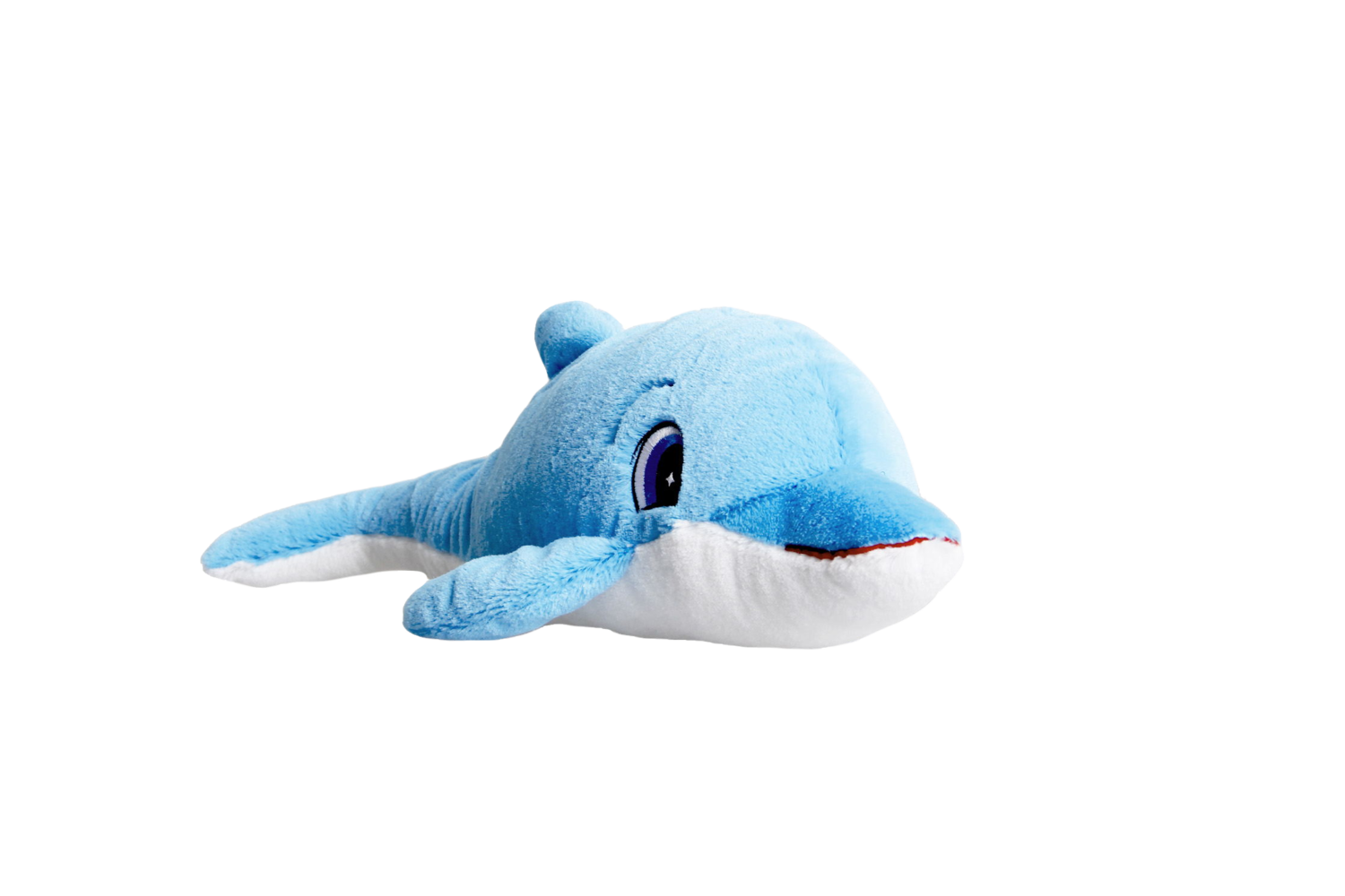 """16"""" Dolphin Activity Pack"""
