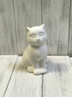 Cat - Tabby Sitting