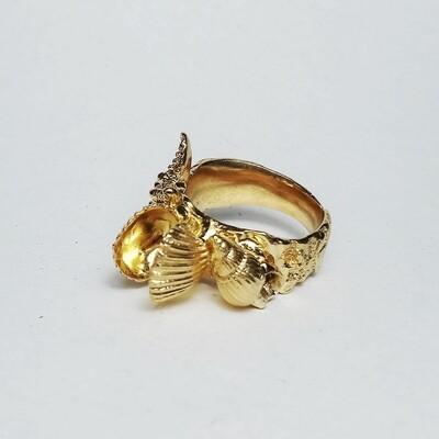 Tesori del mare, anello a fascia oro18k