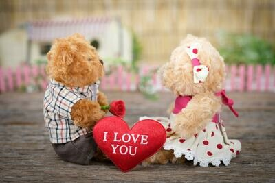 Love teddies