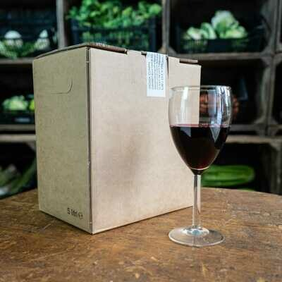 BAG IN BOX CABERNET BIOLOGICO - 5 LT