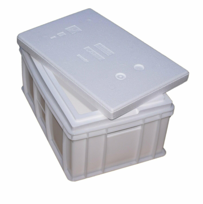 Pojemnik z wkładem Styropianowym 32 litrowy