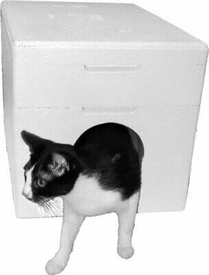 Dom dla kota cieplutki niemalowany 4cm BIAŁY