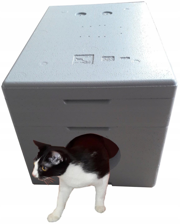 Domek kotka siwy