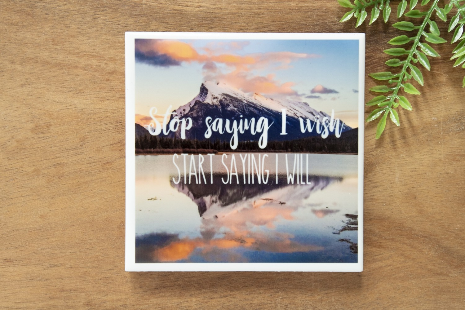 Stop Saying I Wish, Start Saying I Will-Nature Photo Coaster