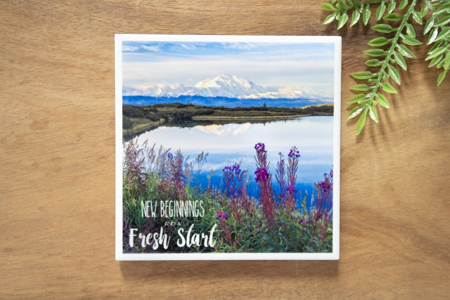 New Beginnings And A Fresh Start-Nature Photo Coaster