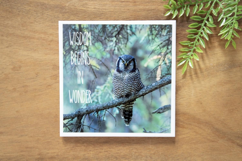 Wisdom Begins In Wonder-Nature Photo Coaster
