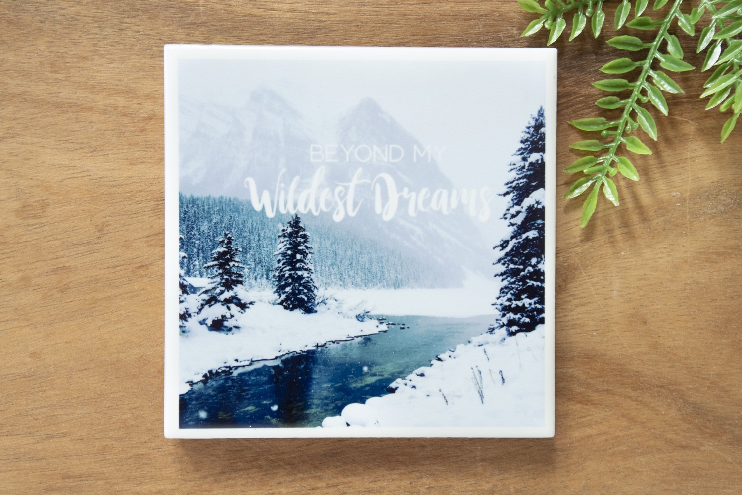 Beyond My Wildest Dreams-Nature Photo Coaster
