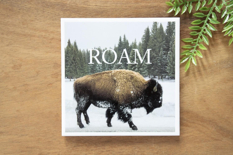 Roam-Nature Photo Coaster