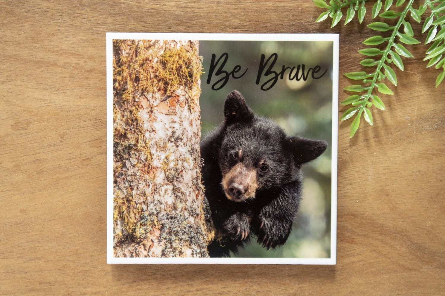 Be Brave-Nature Photo Coaster
