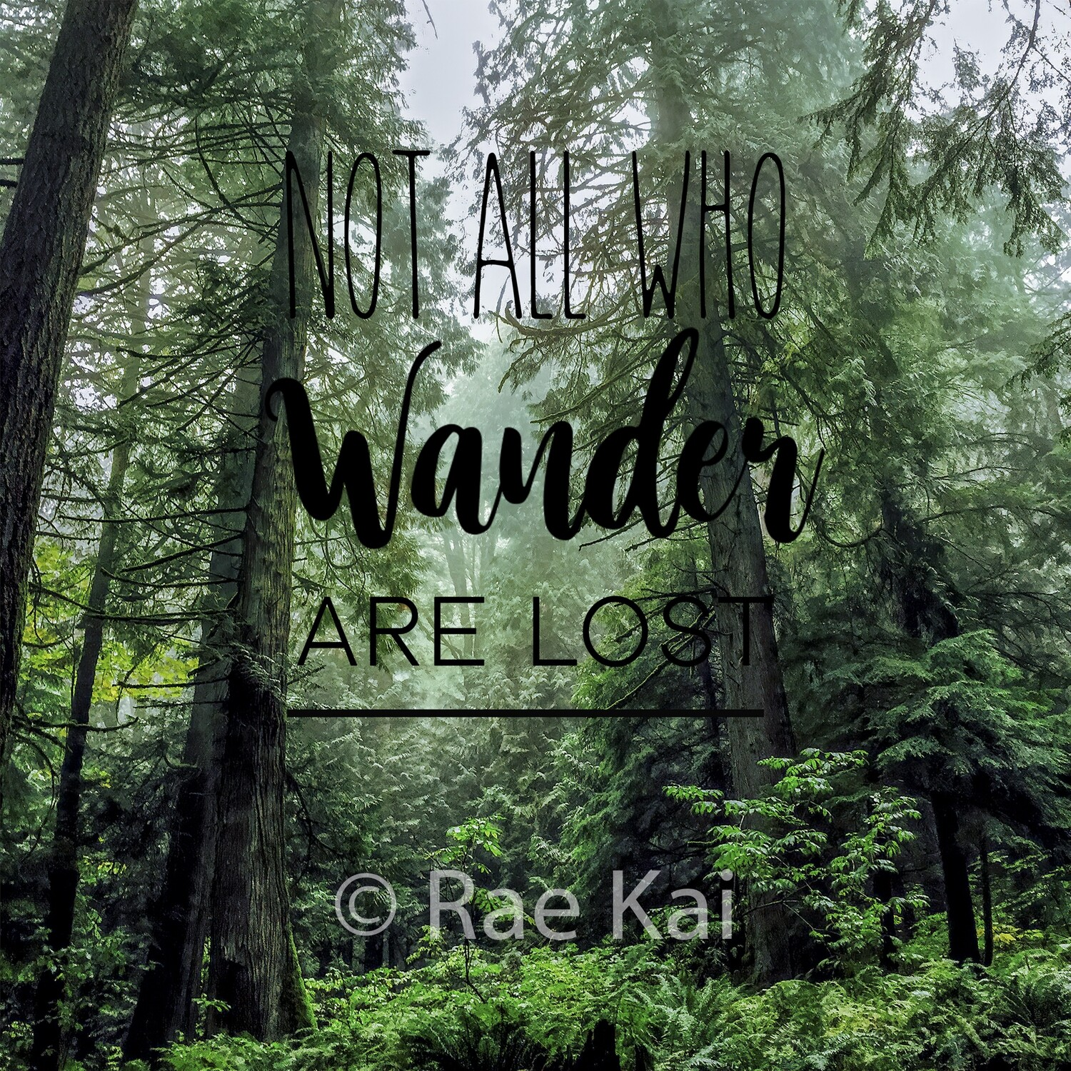 Not All Who Wander Are Lost-Inspirational Square Photo