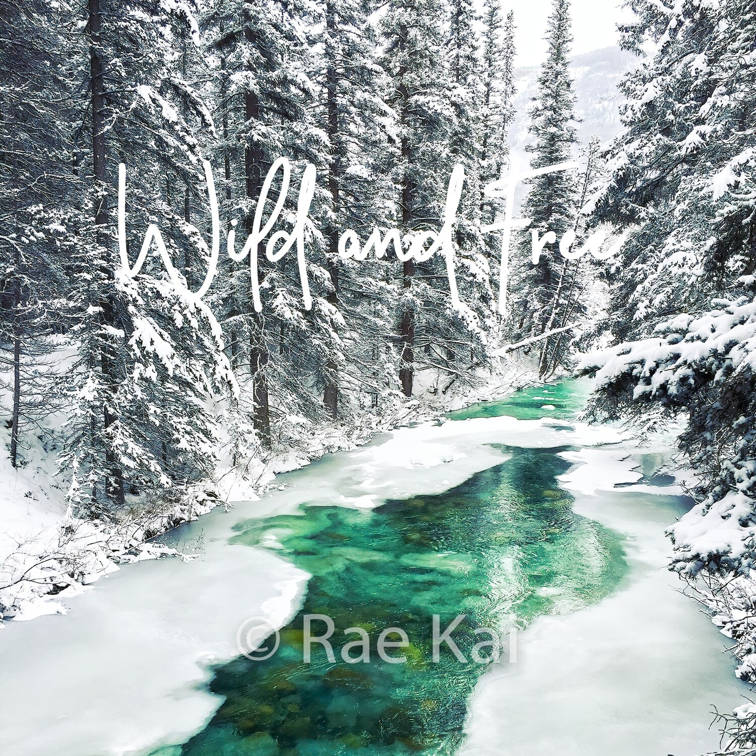 Wild And Free-Inspirational Square Photo