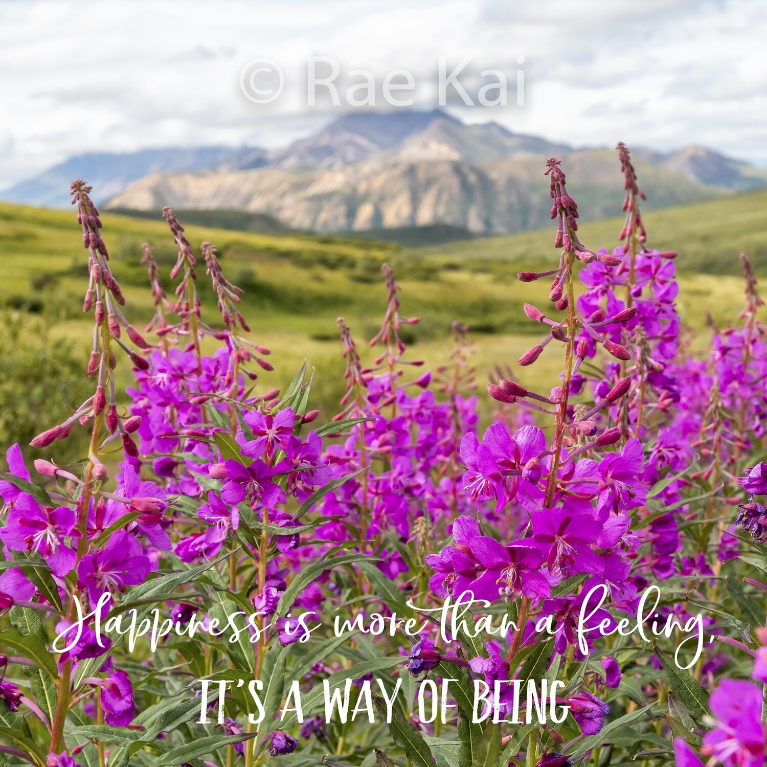 Happiness is More than a Feeling-Inspirational Square Photo