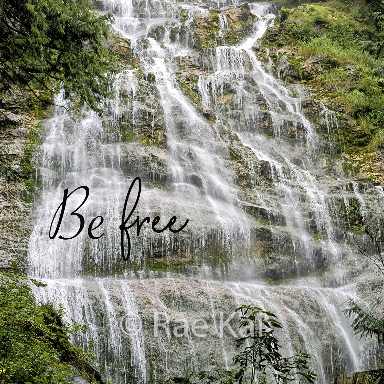 Be Free-Inspirational Square Photo