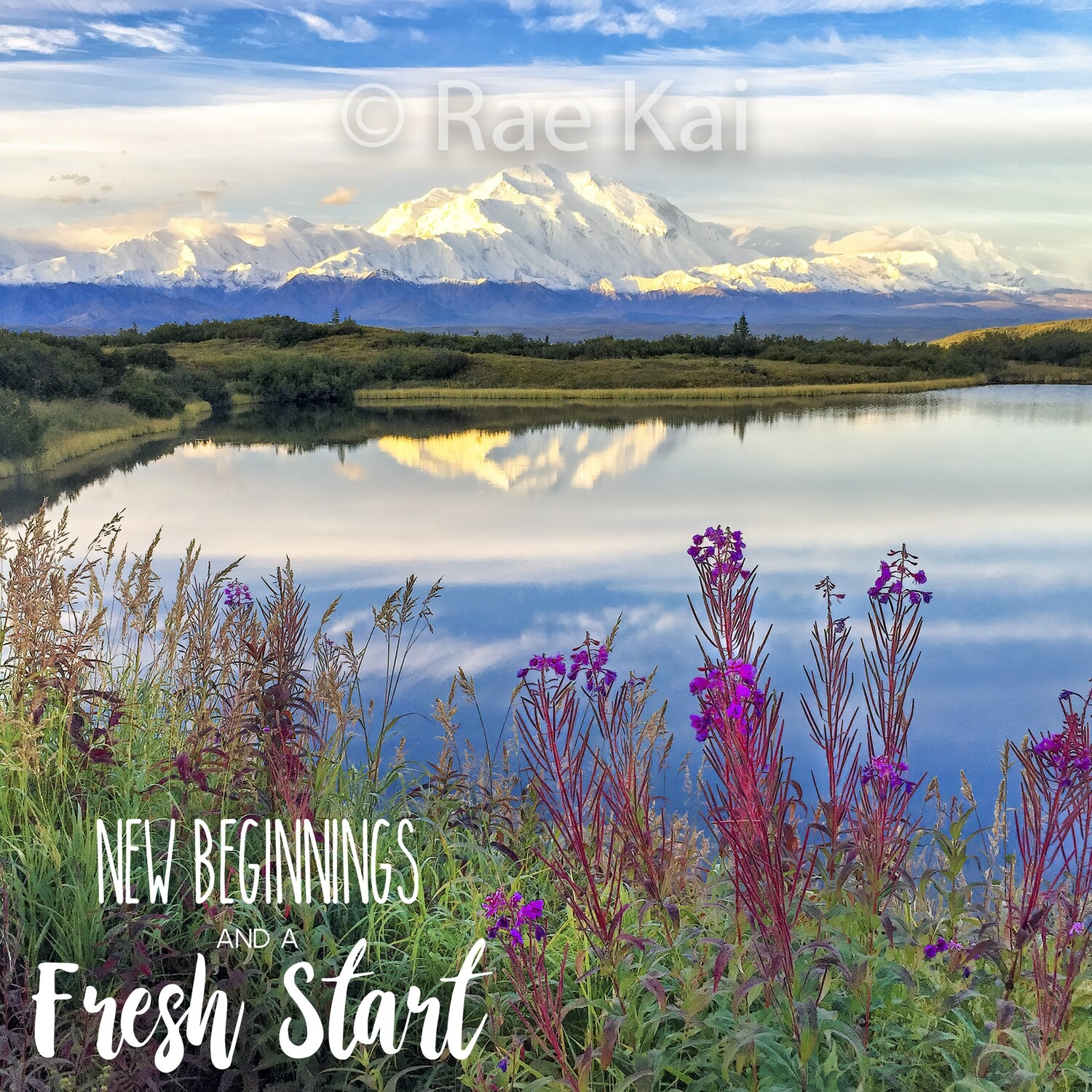 New Beginnings And A Fresh Start-Inspirational Square Photo