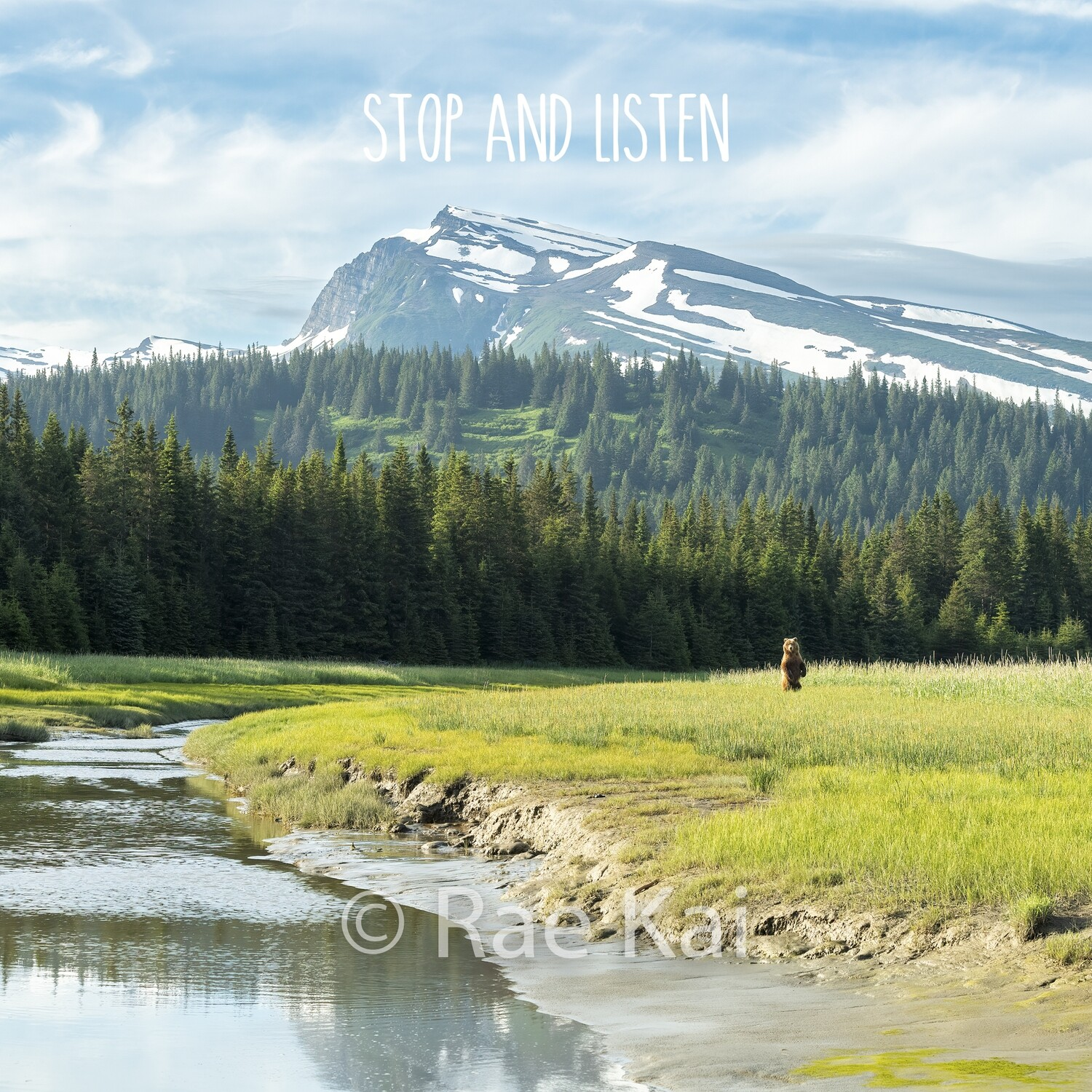 Stop and Listen-Inspirational Square Photo