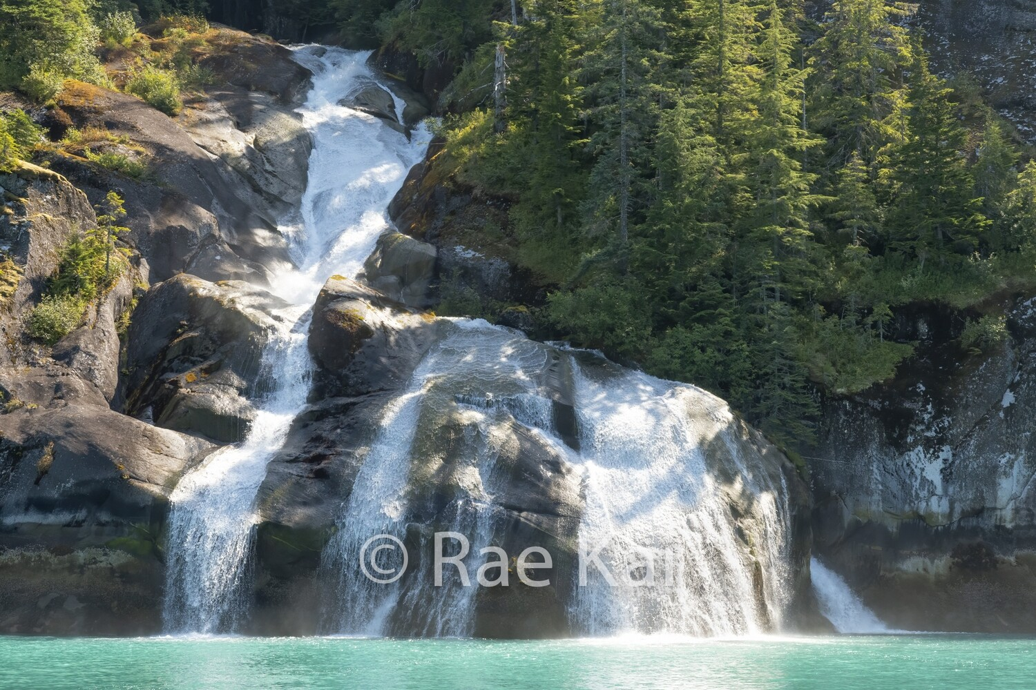 Four Plunge Falls-Traditional Photo