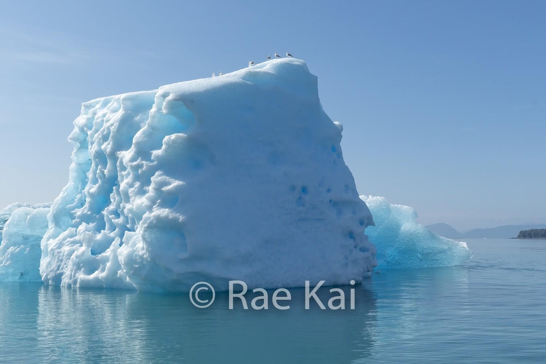 Ice Dice-Traditional Photo