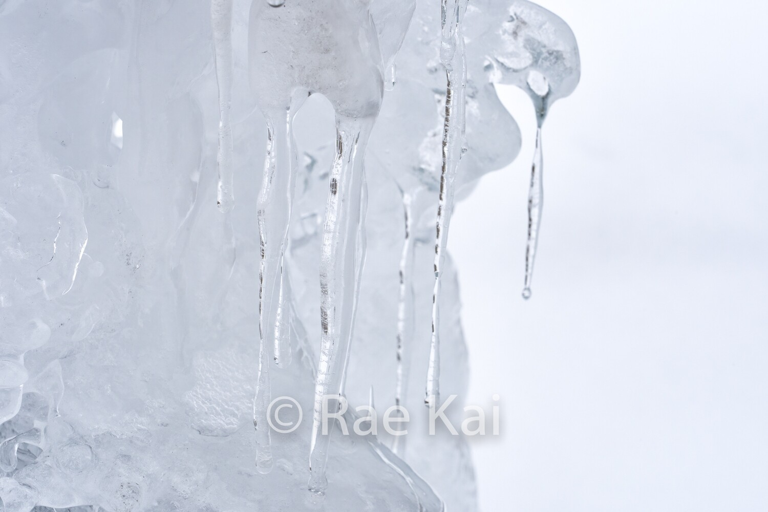 Icicles-Traditional Photo