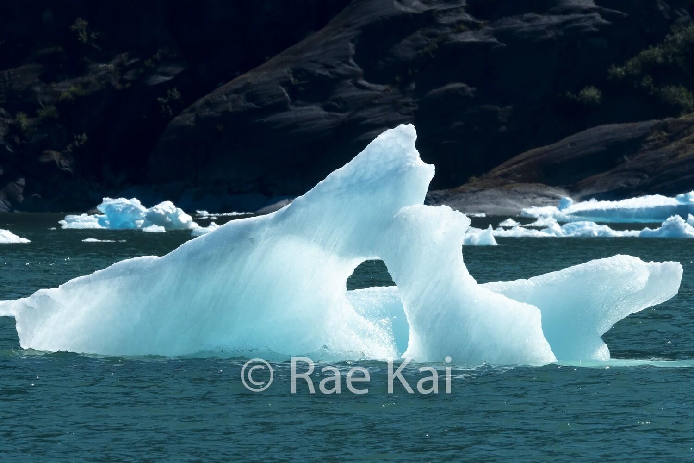 Open Iceberg-Traditional Photo