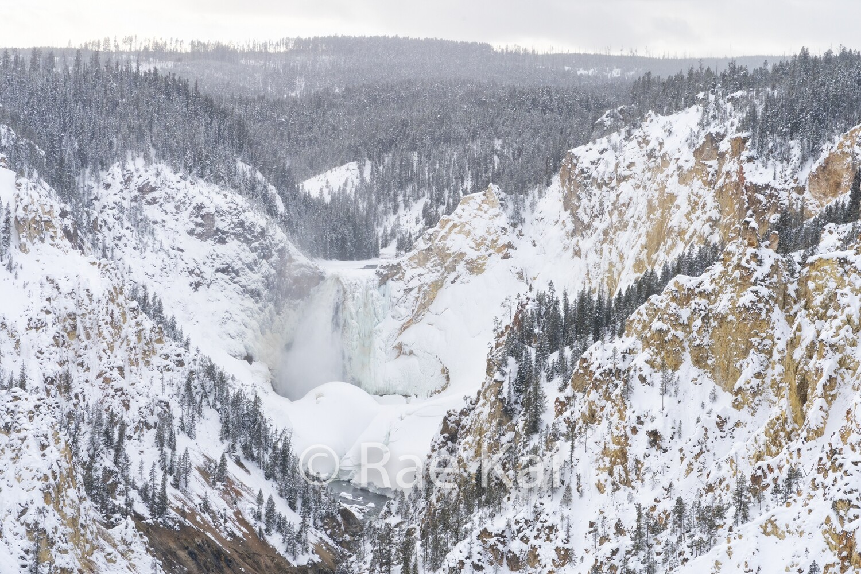 Winter Canyon-Traditional Photo