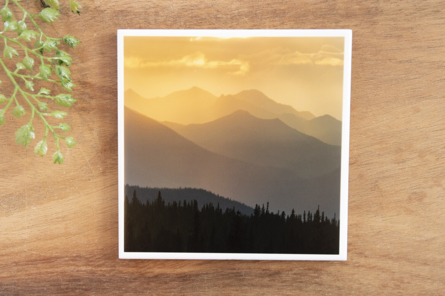 Mountain Silhouette-Nature Photo Coaster