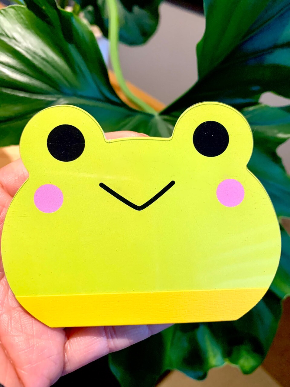 Kamio Frog & Kuma Die Cut Memo Pad