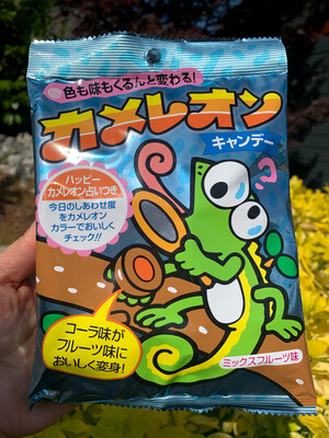 Japan Kikko Seika Fortune Candy