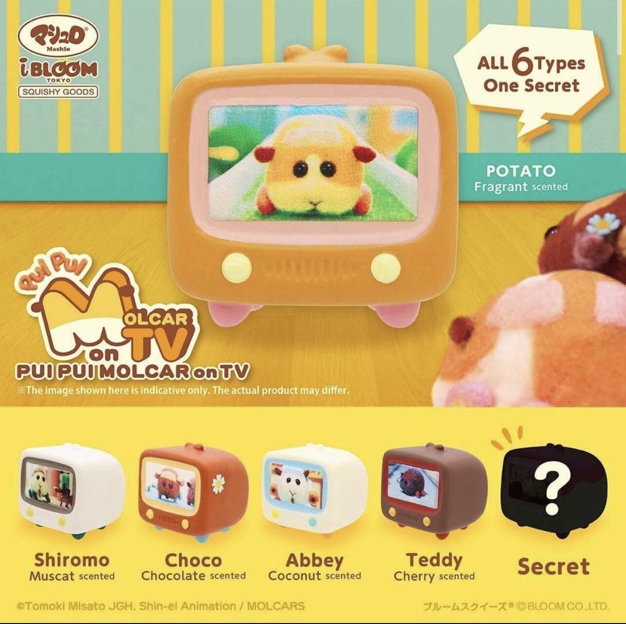 iBloom Pui Pui Molcar Mini Television TV Squishy Blind Box