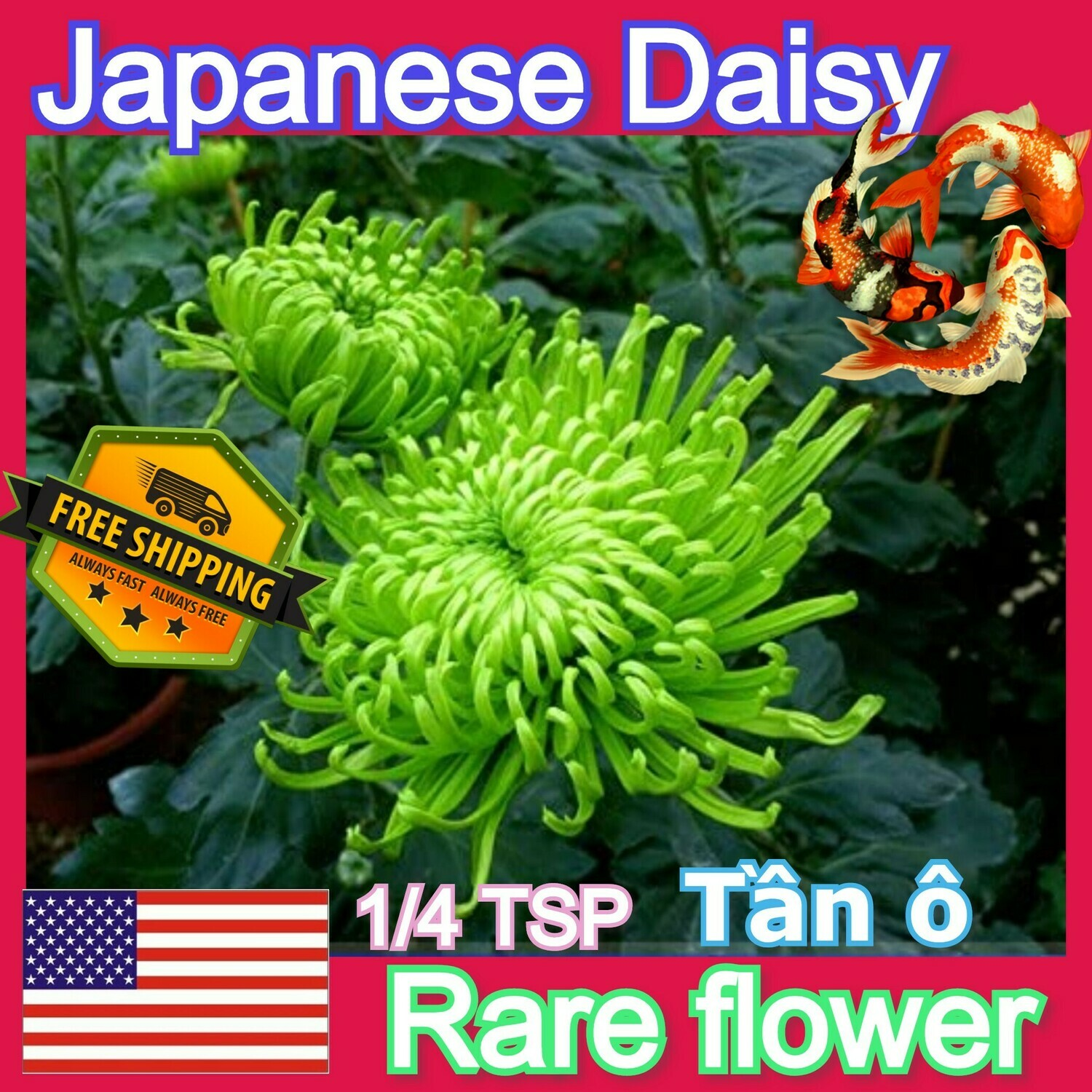 Green Chrysanthemum Shungiku Tan O