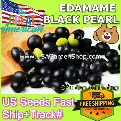 Edamame Black Beans Đậu đen xanh lòng