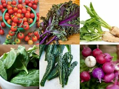 6 Packs Essential Nutrition Powerhouse seeds