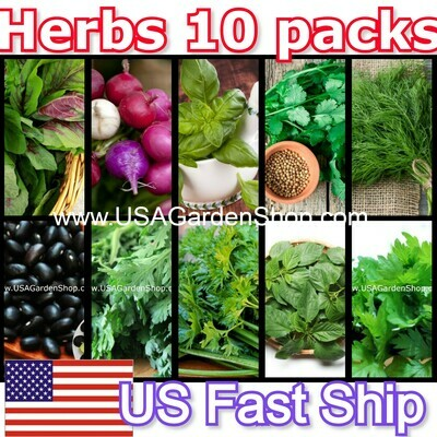10 in 1 Bulk Organic Herbs