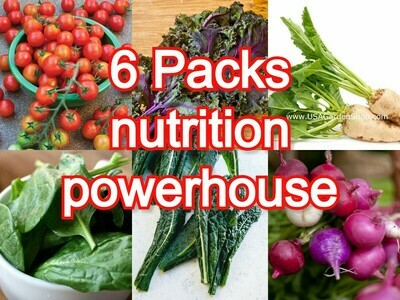 6 Seeds Packs Essential Nutrition Powerhouse